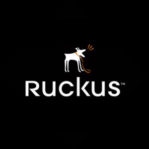 ruckuslooblack